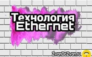 Технология Ethernet — самая популярная для создания компьютерных сетей