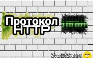 HTTP протокол передачи Гипертекста — основа системы WWW