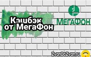 Кэшбэк от Мегафон — новая услуга «Персональное предложение»