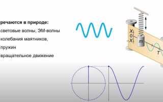 Синусоидальный сигнал как базис