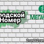 """Услуга """"Дополнительный Городской Номер"""" от МегаФон"""