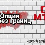"""Подробное описание Опции от МТС """"Ноль Без Границ"""""""